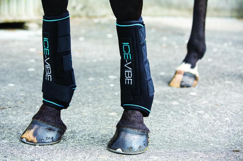 Ice Vibe Gamaschen Horseware kaufen
