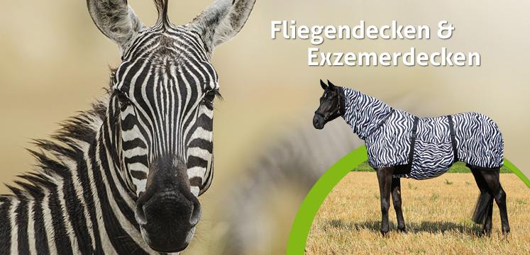 Zebra-Fliegendecken
