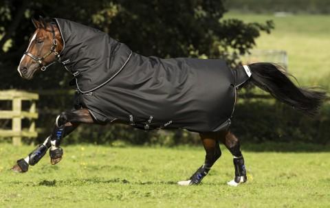 Winterdecke Amigo Bravo12 Plus 400g schwarz HORSEWARE