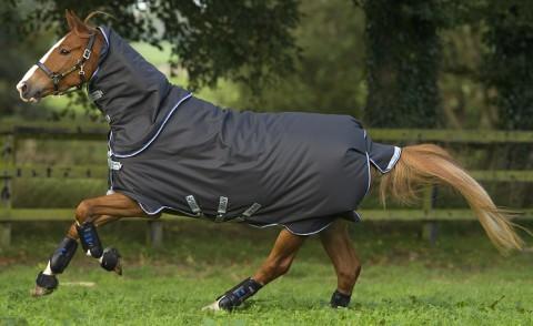 Winterdecke Amigo Bravo12 Plus 250g grau HORSEWARE