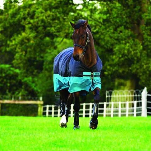 Winterdecke Amigo Mio medium 200g black/turquoise HORSEWARE