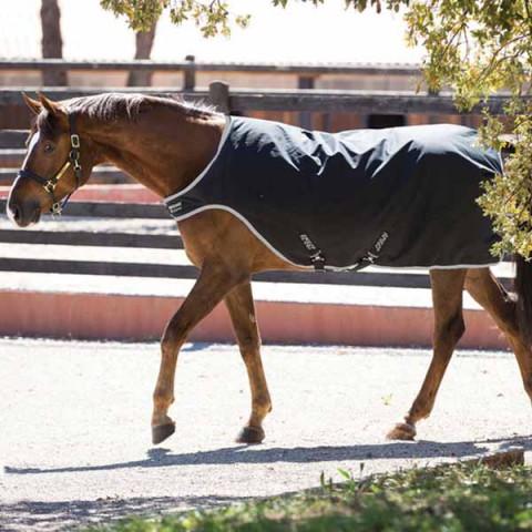 Amigo Walker 200g schwarz/silber HORSEWARE