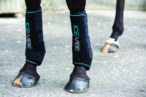 ICE-Vibe Boot Full schwarz HORSEWARE