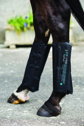 ICE-Vibe Cold Packs schwarz HORSEWARE