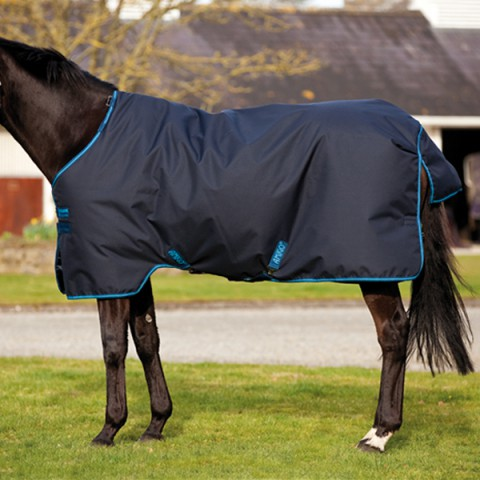 Amigo Bravo12 100g navy/electric blue HORSEWARE