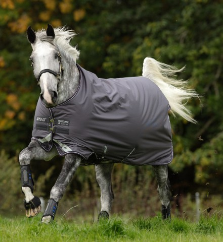Amigo Bravo12 Lite 0g excal/plum/white&silver HORSEWARE