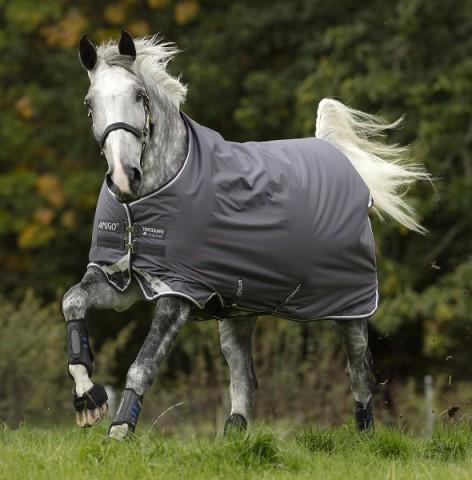 Amigo Bravo12 250g excal/plum/white&silver HORSEWARE