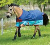 Amigo Mio darkblue/aqua/red light HORSEWARE