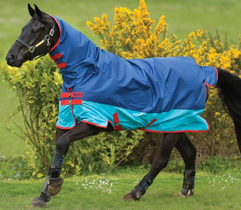 Amigo All in One darkblue/aqua/red light HORSEWARE