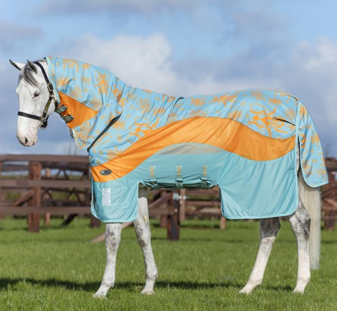 Amigo 3in1 Evolution aqua/orange HORSEWARE